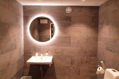 Handikappanpassad toalett med spottar och belyst spegel